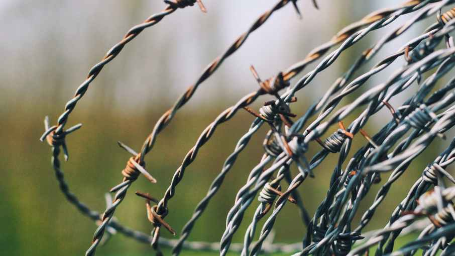 close up photography of barbed wire